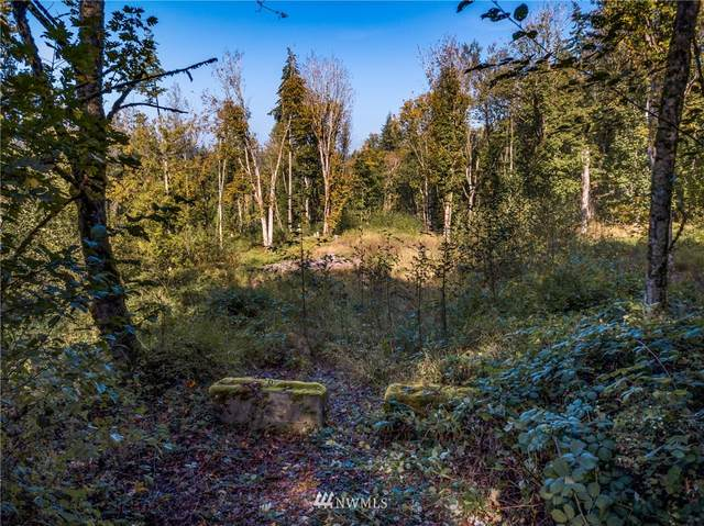 0 Squalicum Mountain Road, Bellingham, WA 98226 (#1670324) :: NW Home Experts