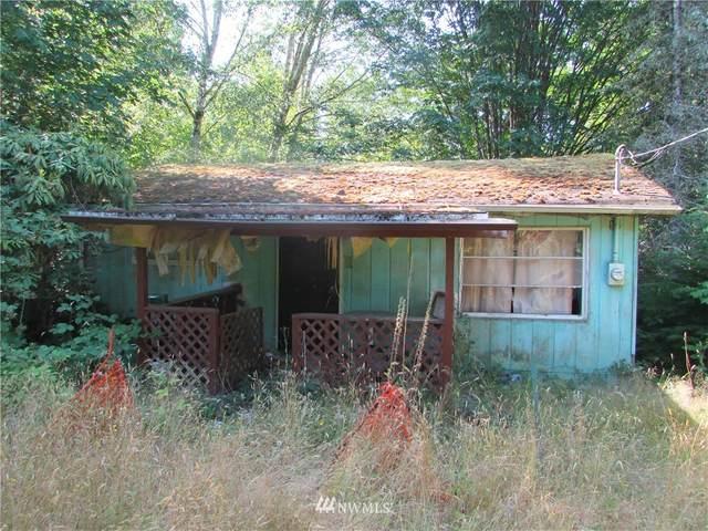 193 W Satsop Drive, Elma, WA 98541 (#1670729) :: NW Home Experts