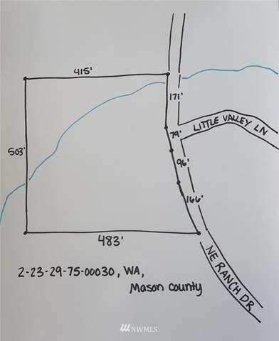 291 NE Ranch Drive, Tahuya, WA 98588 (#1671137) :: NW Home Experts