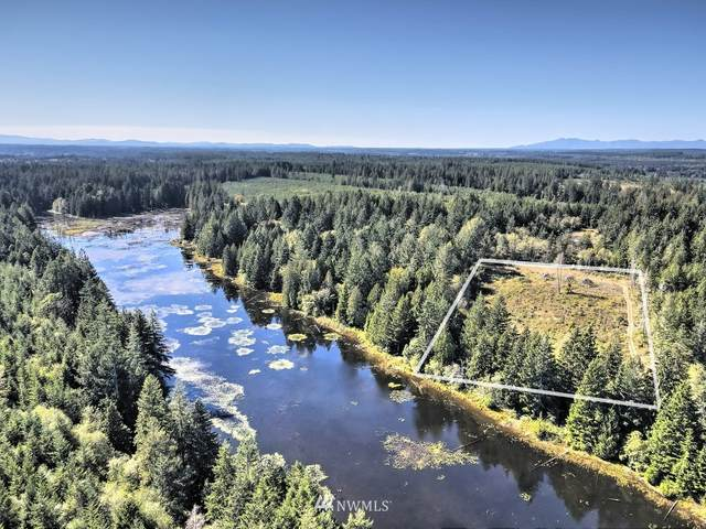 711 Dawn Drive, Allyn, WA 98524 (#1671740) :: Icon Real Estate Group