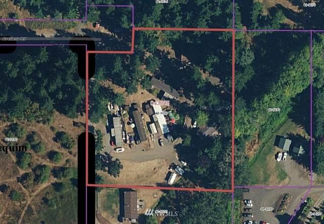 241 Avellana Road, Sequim, WA 98382 (#1672020) :: Ben Kinney Real Estate Team