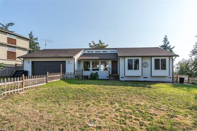 2416 254th Street NW, Stanwood, WA 98292 (#1672882) :: TRI STAR Team | RE/MAX NW