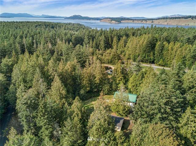 346 Wildflower Lane, Friday Harbor, WA 98250 (#1672889) :: Pacific Partners @ Greene Realty