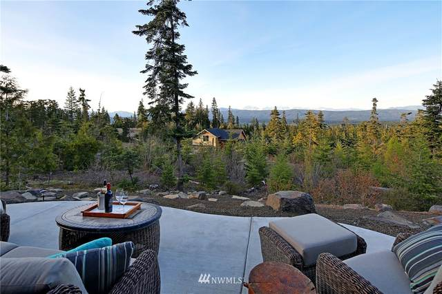 190 Snow Ridge Drive, Cle Elum, WA 98922 (#1673187) :: NW Home Experts