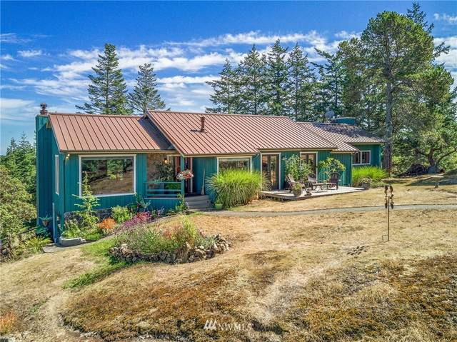 53 Panorama Place, San Juan Island, WA 98250 (#1673299) :: The Shiflett Group
