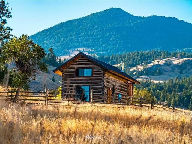 0 Lower Chopaka Lake Road, Loomis, WA 98827 (#1673327) :: Keller Williams Realty