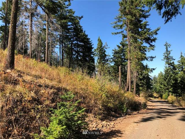 0 Hidden Valley Terrace Road, Cle Elum, WA 98922 (MLS #1673491) :: Community Real Estate Group