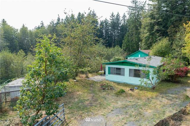 161 Egg & I, Chimacum, WA 98325 (#1673736) :: Priority One Realty Inc.
