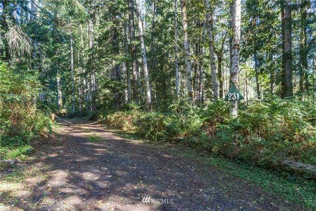 231 Song Dog Hollow, Quilcene, WA 98376 (#1674158) :: Mike & Sandi Nelson Real Estate