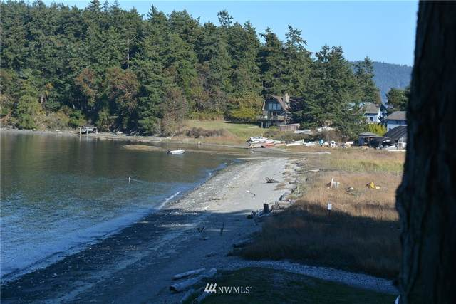 661 Port Stanley Road, Lopez Island, WA 98261 (#1675117) :: Ben Kinney Real Estate Team