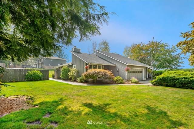 418 Mead Avenue, Everson, WA 98247 (#1675233) :: Pickett Street Properties