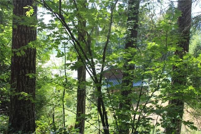 1111 N Dow Ridge Road, Hoodsport, WA 98548 (#1676217) :: M4 Real Estate Group
