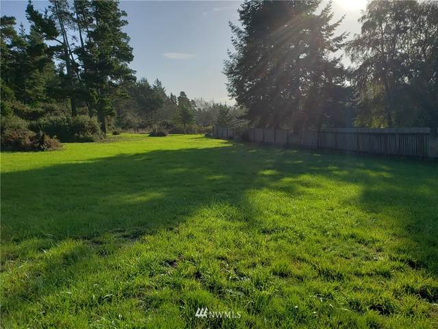66 245th Lane, Ocean Park, WA 98640 (#1676534) :: NW Home Experts