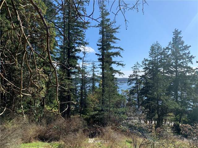 49 Killebrew Lake Road, Orcas Island, WA 98280 (#1676691) :: Icon Real Estate Group