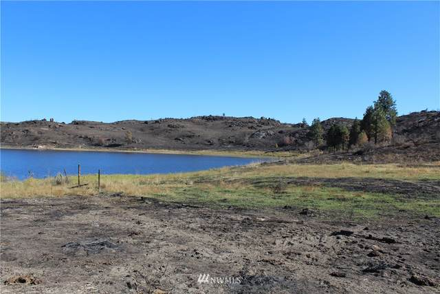 0 Cameron Lake Loop Road, Okanogan, WA 98840 (MLS #1676722) :: Community Real Estate Group