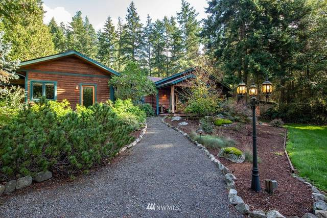 197 Mitchell Bay Road, Friday Harbor, WA 98250 (#1676843) :: TRI STAR Team | RE/MAX NW