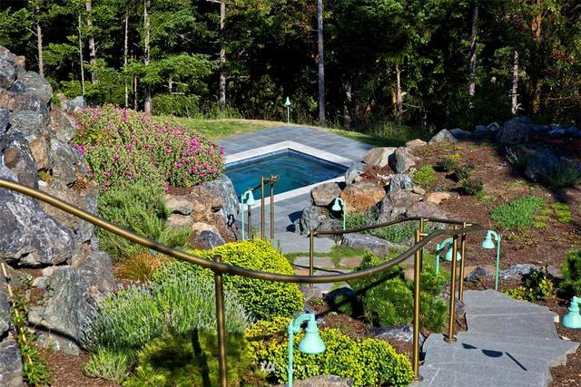 678 Primrose Lane, Friday Harbor, WA 98250 (#1676869) :: The Robinett Group