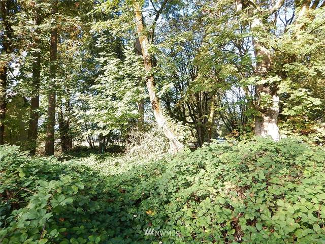 11324 183rd Drive NE, Granite Falls, WA 98252 (#1677186) :: Mike & Sandi Nelson Real Estate