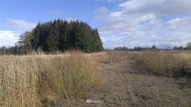 5980 Olson Road, Ferndale, WA 98248 (#1677360) :: NW Home Experts