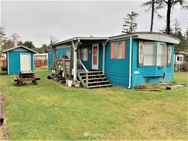 852 Trinidad Court, Ocean Shores, WA 98569 (#1677704) :: Alchemy Real Estate