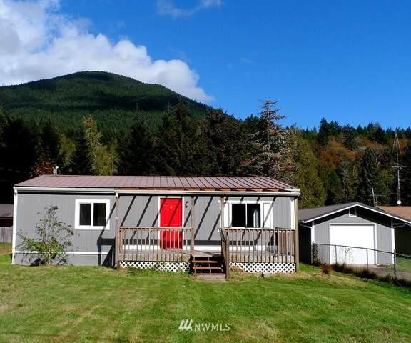 91 Morgan Lane, Brinnon, WA 98320 (#1678211) :: M4 Real Estate Group
