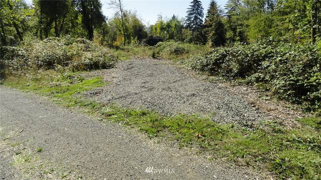 0 190th Street Ct SW, Dupont, WA 98327 (MLS #1678900) :: Brantley Christianson Real Estate