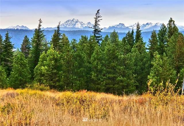 0 Stag Road, Cle Elum, WA 98922 (#1679001) :: The Robinett Group
