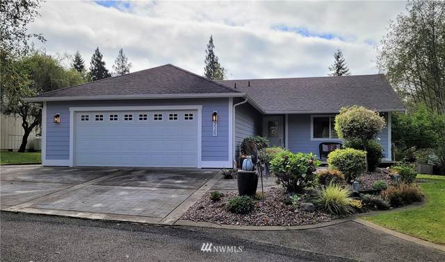 225 Vine Lane, Elma, WA 98541 (#1679135) :: M4 Real Estate Group