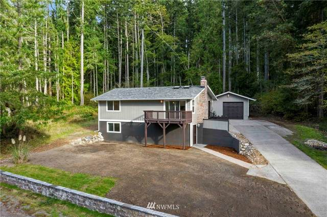 11213 Tillicum Drive, Anderson Island, WA 98303 (#1679190) :: Mike & Sandi Nelson Real Estate