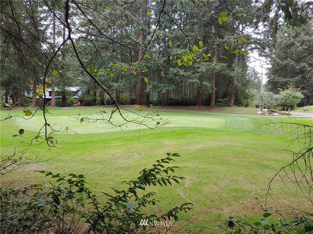 11303 Country Club Drive, Anderson Island, WA 98303 (#1679212) :: Ben Kinney Real Estate Team
