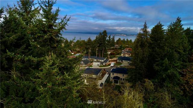 1211 Walnut Lane, Steilacoom, WA 98388 (#1679303) :: Alchemy Real Estate