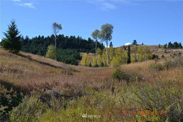 80 Moose Mountain Road, Oroville, WA 98844 (#1679420) :: Priority One Realty Inc.