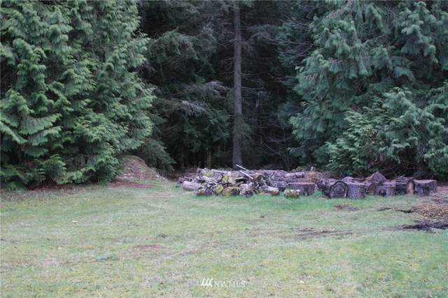 21800 SE 4th Street, Sammamish, WA 98074 (#1679544) :: NW Home Experts