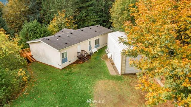 271 Seamount Drive, Brinnon, WA 98320 (#1679997) :: NW Home Experts