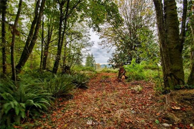 0 Ranae Ln Lane, Sedro Woolley, WA 98284 (#1680598) :: Keller Williams Western Realty
