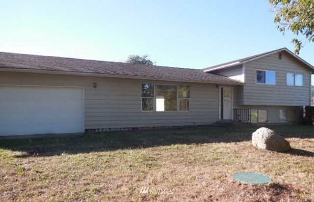 170 Morgison Loop, Sequim, WA 98382 (#1680893) :: McAuley Homes