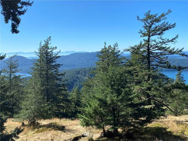 247 Old Growth Lane, Orcas Island, WA 98245 (#1680925) :: Icon Real Estate Group