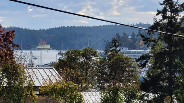 530 Marble Street, Friday Harbor, WA 98250 (#1680978) :: Mike & Sandi Nelson Real Estate