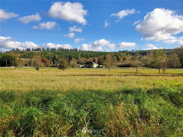 81 Cherry Lane, Quilcene, WA 98376 (#1681361) :: Better Properties Real Estate