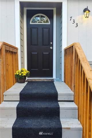733 NE Bear Creek Dewatto Road, Belfair, WA 98528 (#1681464) :: NW Home Experts