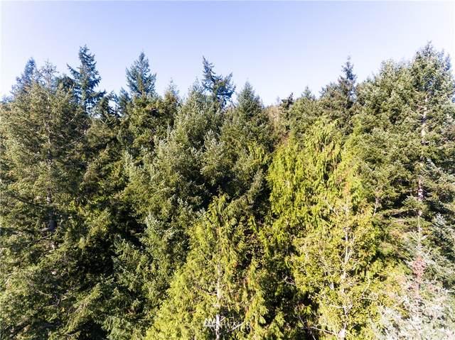 0 Black Bear Lane, Centralia, WA 98531 (#1681626) :: M4 Real Estate Group