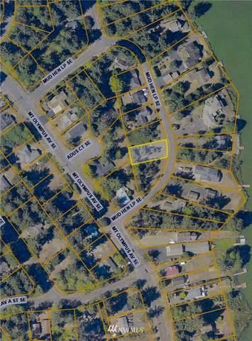 465 Mud Hen Loop SE, Ocean Shores, WA 98569 (#1681754) :: Mike & Sandi Nelson Real Estate