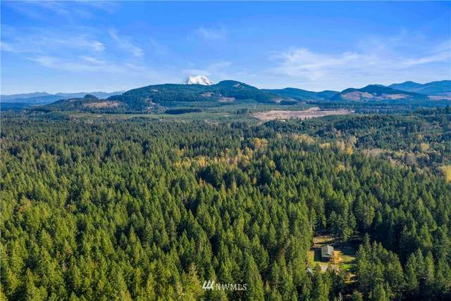 18846 Sorenson Road SE, Yelm, WA 98597 (#1681925) :: The Shiflett Group