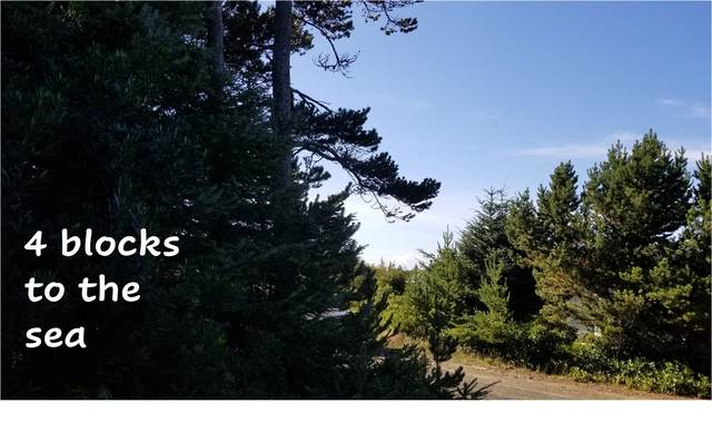 30508 K Place, Ocean Park, WA 98640 (#1682104) :: Engel & Völkers Federal Way