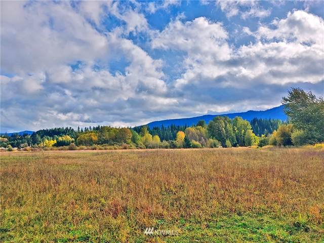 0 Three Lakes Road, Cle Elum, WA 98922 (MLS #1682190) :: Nick McLean Real Estate Group