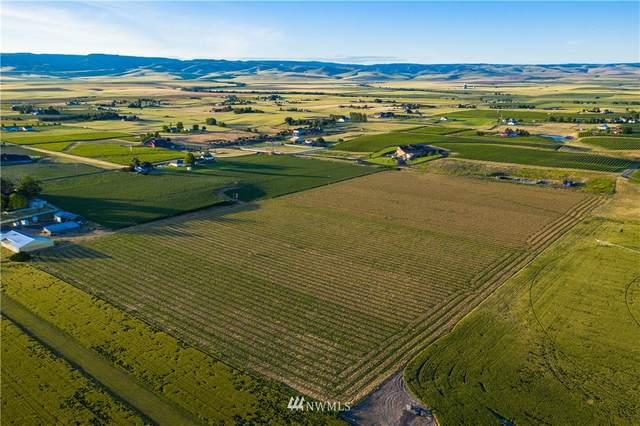 3890 Pranger Road, Walla Walla, WA 99362 (#1682611) :: Pickett Street Properties