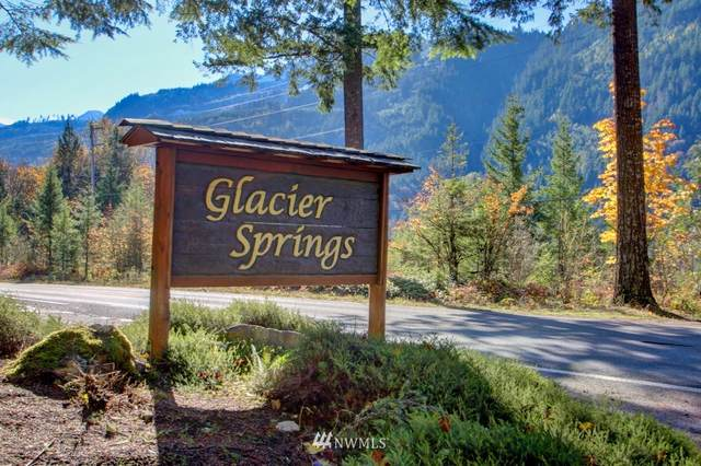 7493 Glacier Springs Drive, Deming, WA 98244 (#1682785) :: Priority One Realty Inc.