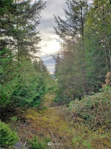 0 Eagle Ridge Road, Orcas Island, WA 98245 (#1682898) :: NW Home Experts