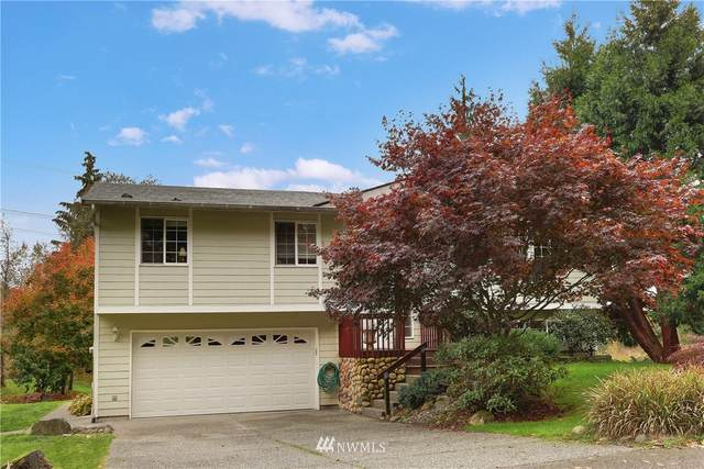 11407 127th Avenue NE, Lake Stevens, WA 98258 (#1683119) :: Priority One Realty Inc.