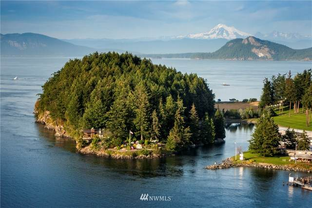 209 Driftwood Dr. #C, Blakely Island, WA 98222 (#1683271) :: Icon Real Estate Group